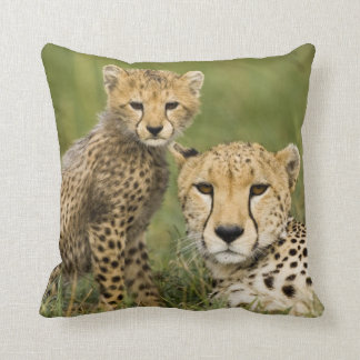 Cheetah, Acinonyx jubatus, with cub in the Throw Pillow