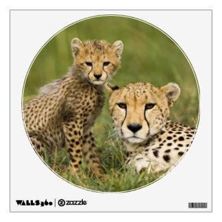 Cheetah, Acinonyx jubatus, with cub in the Wall Sticker