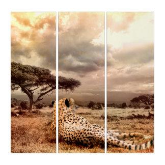 Cheetah AcryliPrint®HD Triptych Art