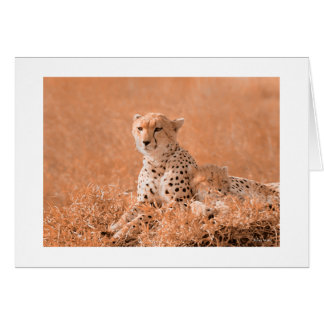 Cheetah and cub wildlife art card