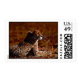Cheetah and God Stamp