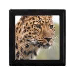 Cheetah Animal Keepsake Box
