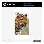 Cheetah Animal Skins For iPhone 4S