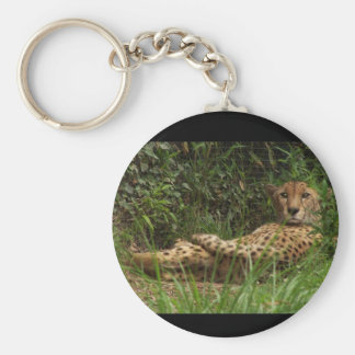 Cheetah At Rest Portrait Keychain
