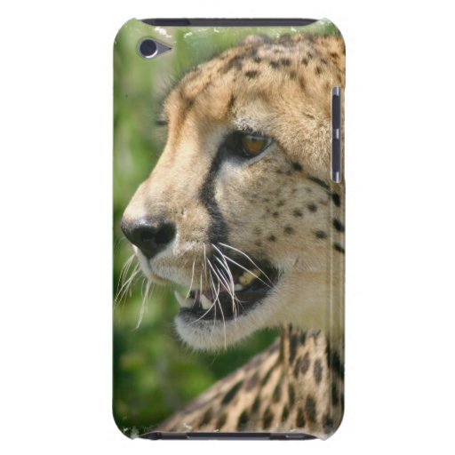 Cheetah Attack iTouch Case Case-Mate iPod Touch Case