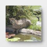 cheetah-b-4 placa de plastico