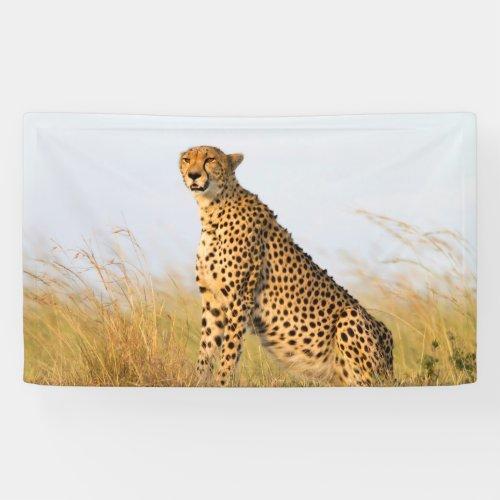 Cheetah Banner
