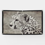 CHEETAH Banner WITH GROMMETS