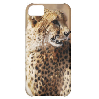 Cheetah beauty with fangs cover for iPhone 5C