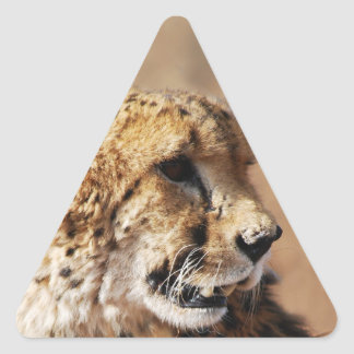 Cheetah beauty with fangs triangle sticker