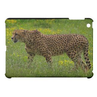 Cheetah, Big Cat,  Animal-Lover, Nature Cover For The iPad Mini
