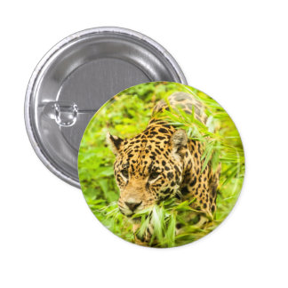 Cheetah - Button