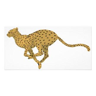 Cheetah! Card