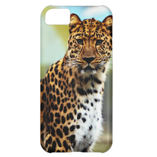 Cheetah iPhone 5C Cover