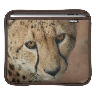 Cheetah Cat  iPad Sleeve