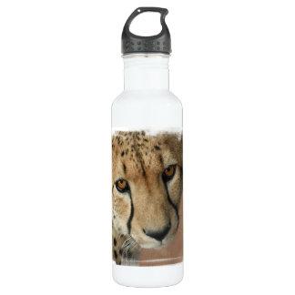 Cheetah Cat  24oz Water Bottle