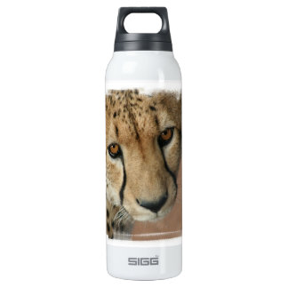 Cheetah Cat  16 Oz Insulated SIGG Thermos Water Bottle