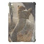 Cheetah Climbing On Tree Cover For The iPad Mini