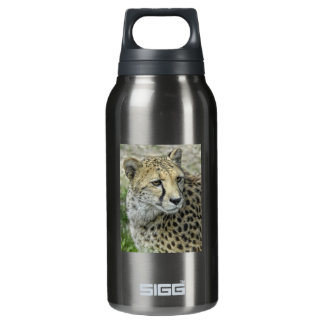 Cheetah Close-Up Insulated Water Bottle