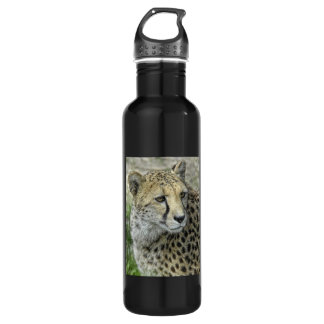 Cheetah Close-Up Stainless Steel Water Bottle