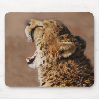 Cheetah could scare a lion mouse pad