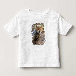 Cheetah Cub Acinonyx Jubatus) as seen in the Toddler T-shirt