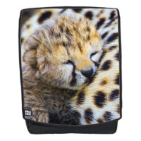 Cheetah Cub Backpack
