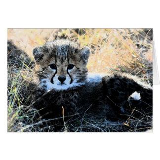 Cheetah cub customizable note card