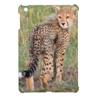 Cheetah Cub Looking Your Way. iPad Mini Covers