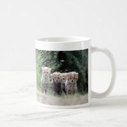 Cheetah cubs coffee mug