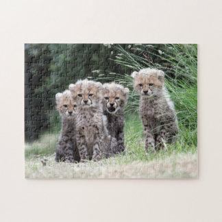 Cheetah cubs jigsaw puzzle