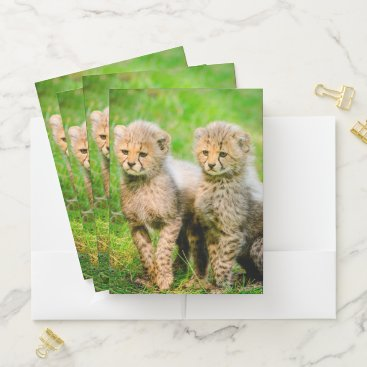 Beach Themed Cheetah Cubs Pocket Folder