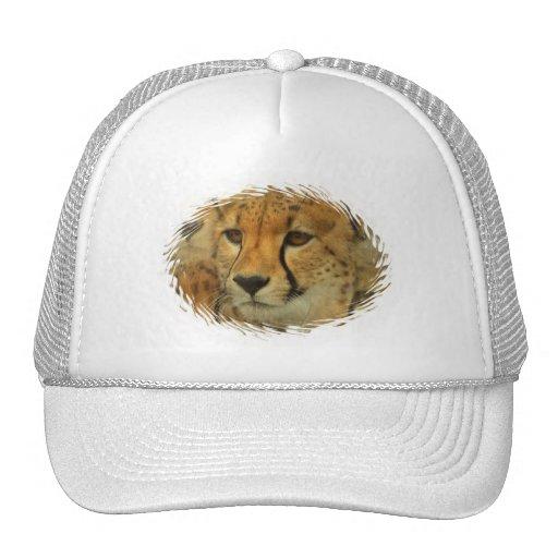 Cheetah Face Baseball Hat