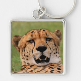 Cheetah Face Square Keychain - Large (2.00'')