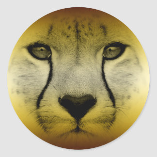 CHEETAH FACE ROUND STICKERS