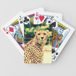 Cheetah glare bicycle playing cards