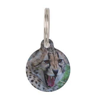 Cheetah Growl Pet Nametags