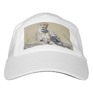 Cheetah Headsweats Hat