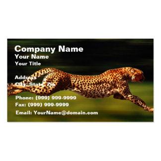 Cheetah Hunting His Prey Business Card