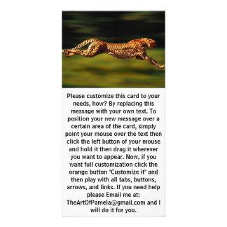 Cheetah Hunting His Prey Customized Photo Card
