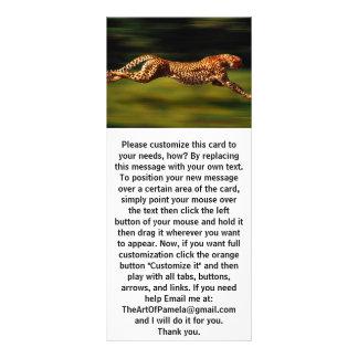 Cheetah Hunting His Prey Rack Card