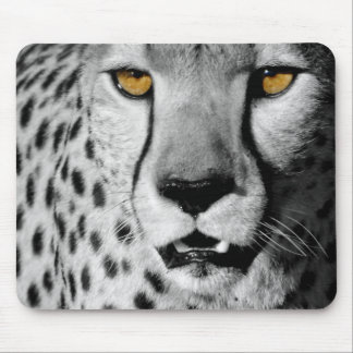 Cheetah in black and white mouse pad