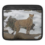 Cheetah in Snow Sleeve For iPads