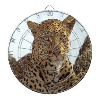 Cheetah in tree dartboard with darts
