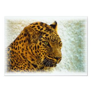 Cheetah Invitation