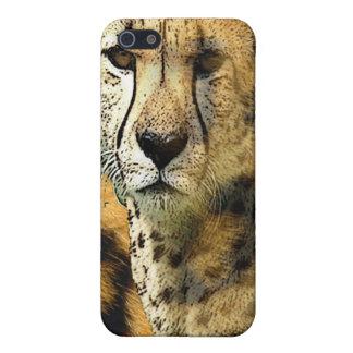 cheetah iPhone 5/5S covers