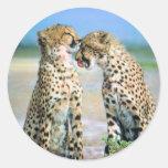 Cheetah Kisses Round Stickers