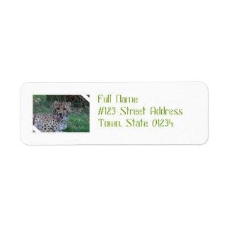 Cheetah Licking His Chops Custom Return Address Labels