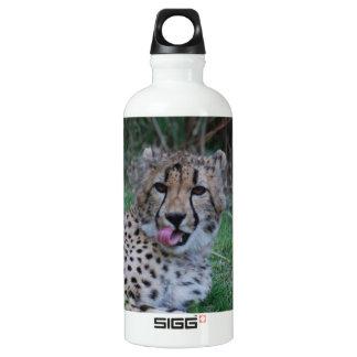 Cheetah Licking His Chops SIGG Traveler 0.6L Water Bottle