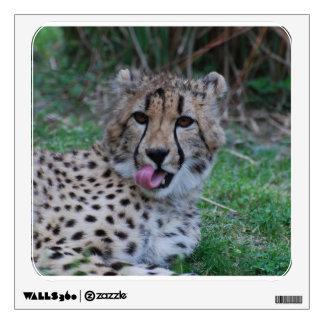 Cheetah Licking His Chops Wall Sticker